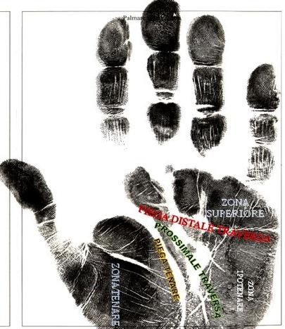 Figura 2 - aree di suddivisione dell'impronta palmare