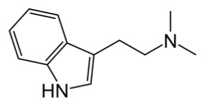 Struttura chimica della N,N-DMT (dimetitriptamina)